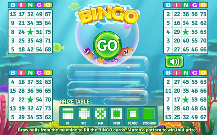 bingo betting online game